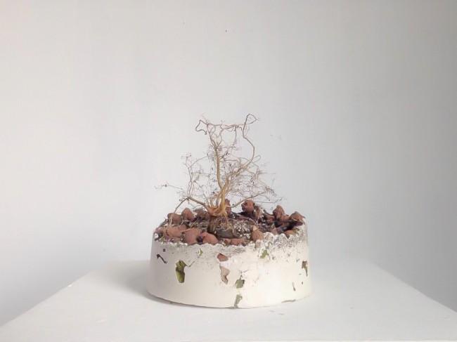 Plastic Cultura - Vitaliy Barabanov